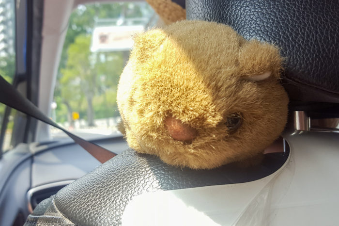 "Our travel mascot ""Willie"" the wombat"